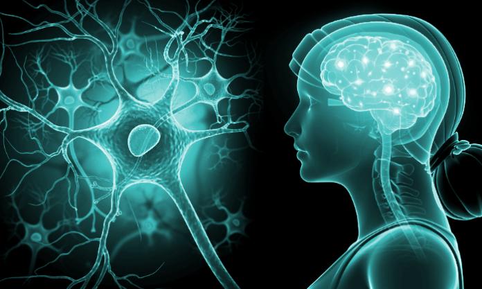Traiter les maladies neurodégénératives